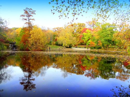 autumn newyork reflection brooklyn image prospectpark dmitriyfomenko fall42014