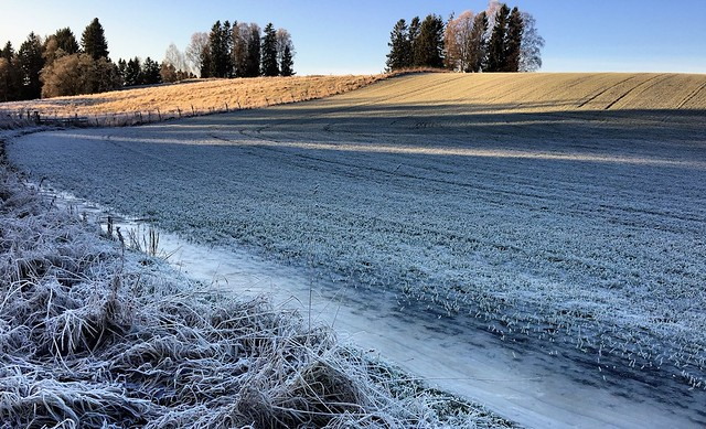 iphone6 plus: A cold morning in Spydeberg, Norway