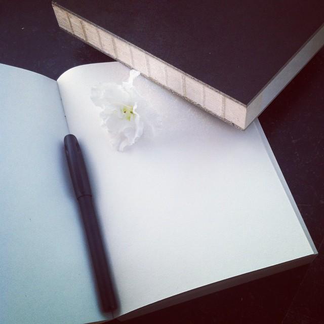 Dagböcker för hat och kärlek.