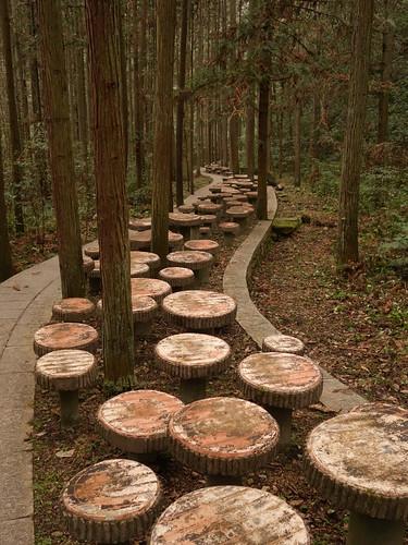 Les champignons de béton