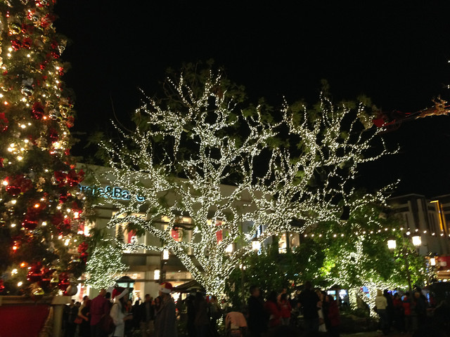 holiday lights at the grove