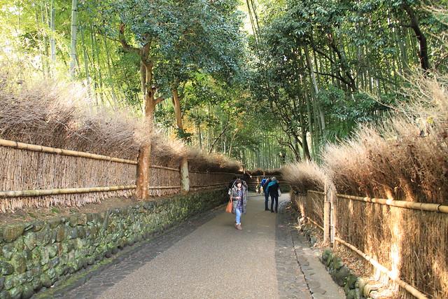 嵐山 - 竹林小徑