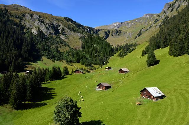Postal suiza en el valle de Grindelwald