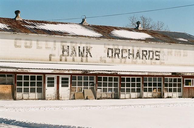 Hawk Orchards