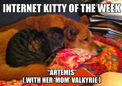 IKOTW Artemis