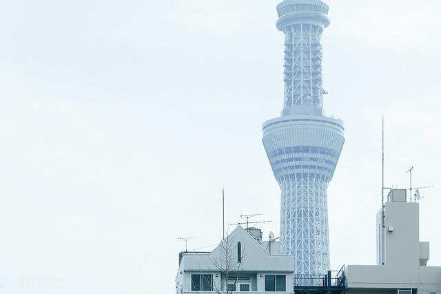PEN F x Tokyo | 19