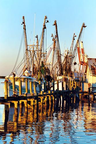 water boats harbor dock florida dusk fernandinabeach clearsky shrimpboats