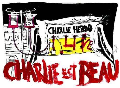 Nous sommes Charlie, par Audrey Dutillet - Les étudiants du CESAN rendent hommage