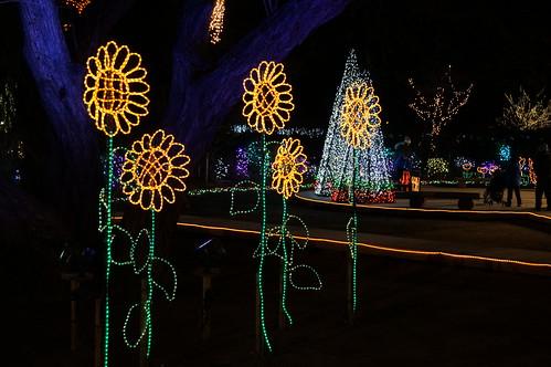 Flower Fantasy 2015 illumination at Ashikaga Flower Park 18