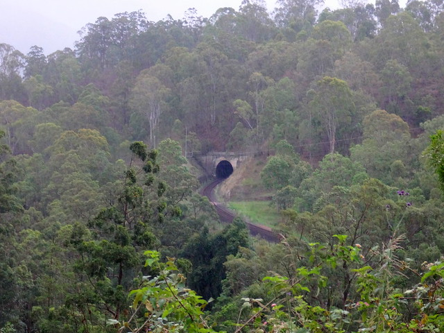 Railway Tunnel, Border Loop, Cougal