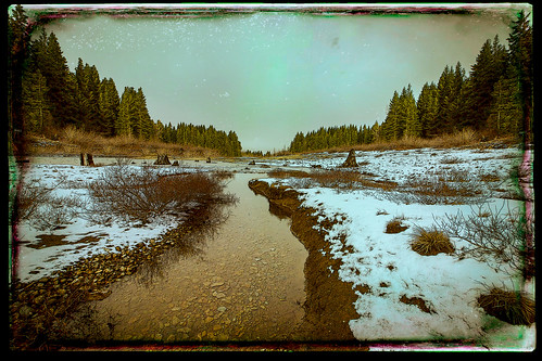 trees lake texture stream jerryjones keecheluslake
