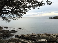 A walk by the shore in Ogunquit, Maine.
