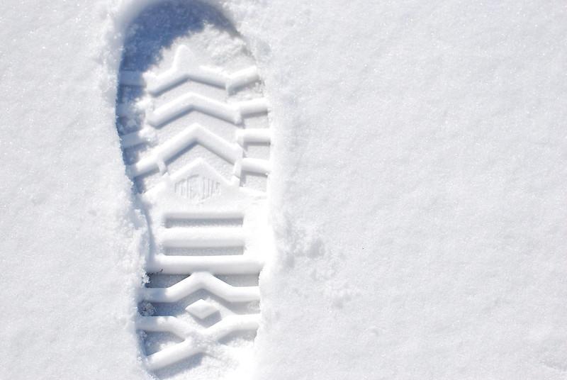 palladium 初冬最新平面廣告