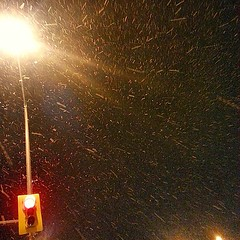 Snowing tonight! #winter #snow #december