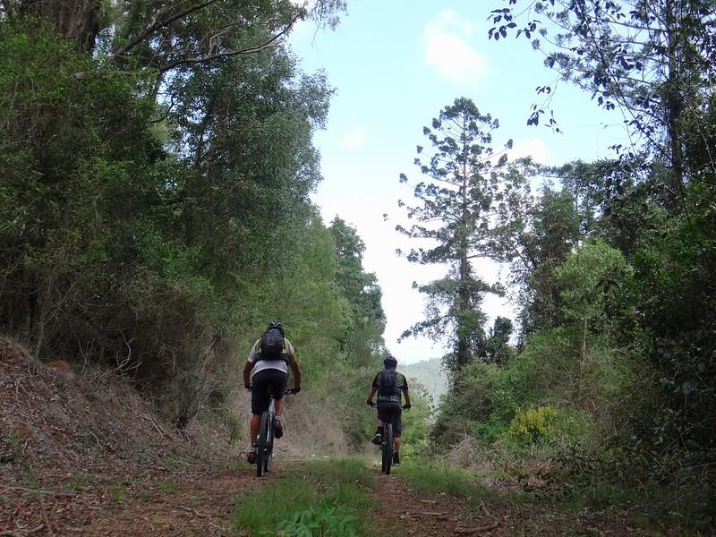 Descent to Westvale Road