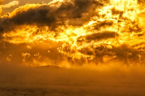 cold sunrise fundy tricky seasmoke 29c hellisaroundthecorner