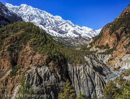 travel nepal mountain color beautiful vertical forest landscape asia outdoor scenic valley remote np annapurnacircuit marsyangdi annapurna himalayas pisang manang gandaki westernregion marshyangdi annapurnaconservationarea