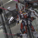 GBWC2014_World_representative_exhibitions-203