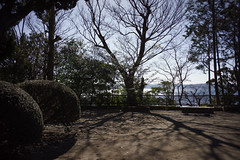 Photo:_DSC5445.jpg By sunoochi