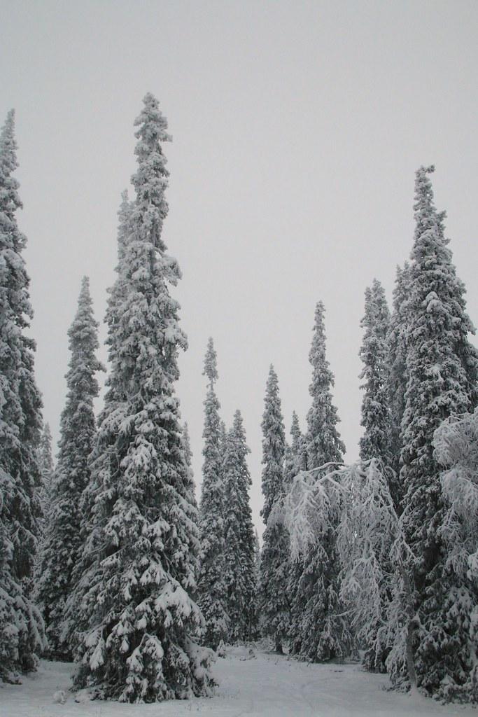 Finland108