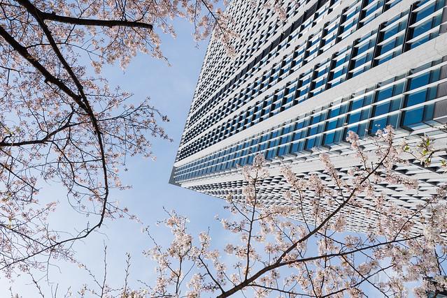Upward of Shinagawa Season Terrace (品川シーズンテラス)