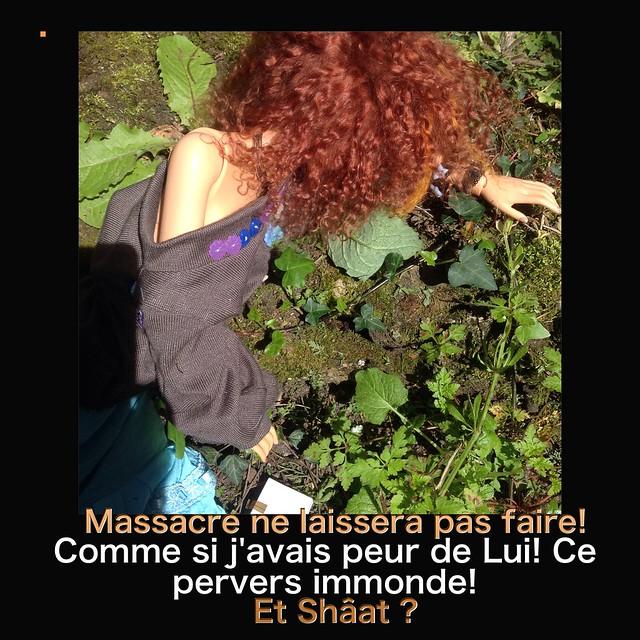 Y a pas que les mortemiamor dans la vie y a les bonsenfants  - Page 3 26791071925_10dddab752_z