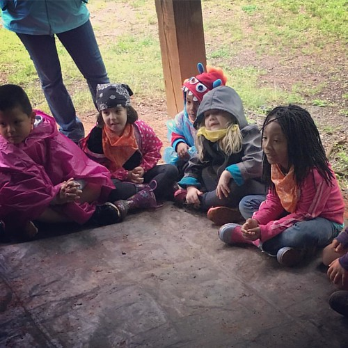 "Best photo I got of Lauren's rainy Eno field trip this morning. I am impressed by the variety of ""dress your kids for rain"" gear. ☔️"