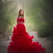 Red by ljholloway photography