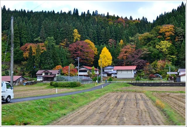 秋田千秋公園030-DSC_3697