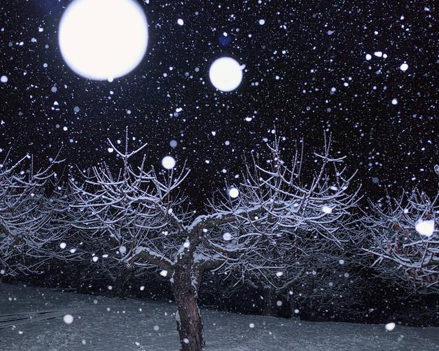 First snow, Okanagan Valley, B.C. Canada