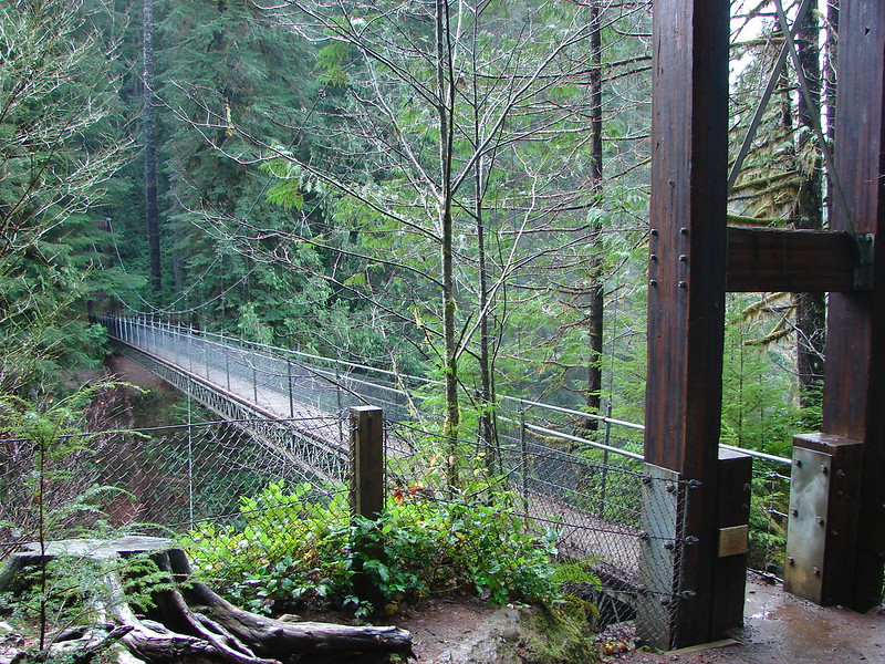 Suspension Bridge over Drift Creek