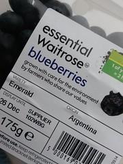 No 34 Berry/berries