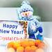 Snow Crystal 2014, TICA
