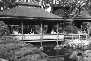 Japanese Tea Garden - Cafe and pond