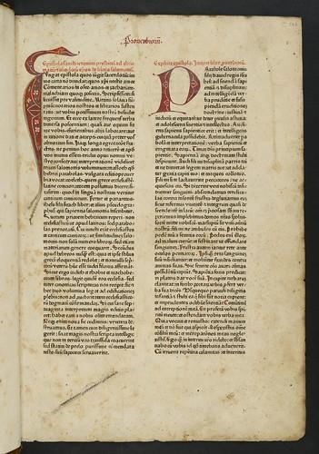 Decorated penwork initials in Biblia latina