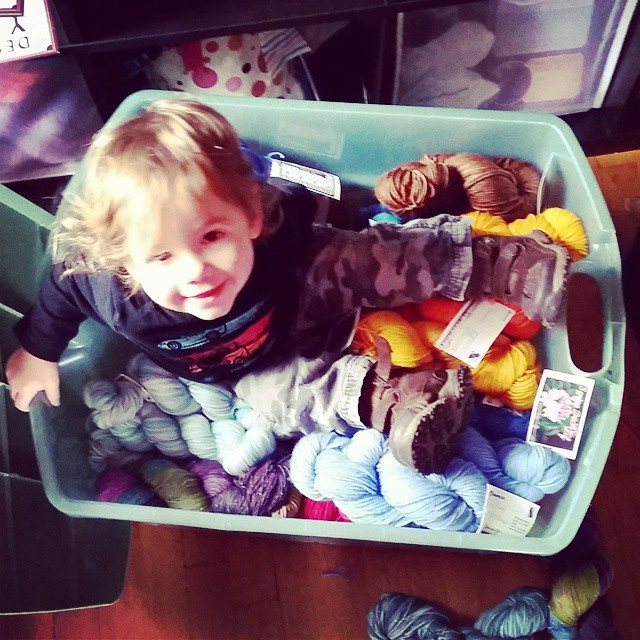 Getting ready for Yarn Cravin' this Sat and Tiny climbed into my bin of yarn! #stevensonpartyoffive #destinationyarn #indiedyer #yarn #knitting #knit