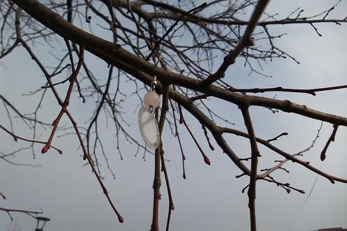 L'albero con l'orecchino
