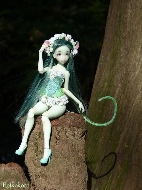 Les tinies de Koikokoro~photos en vrac - Page 6 15657530095_21655101f7_z