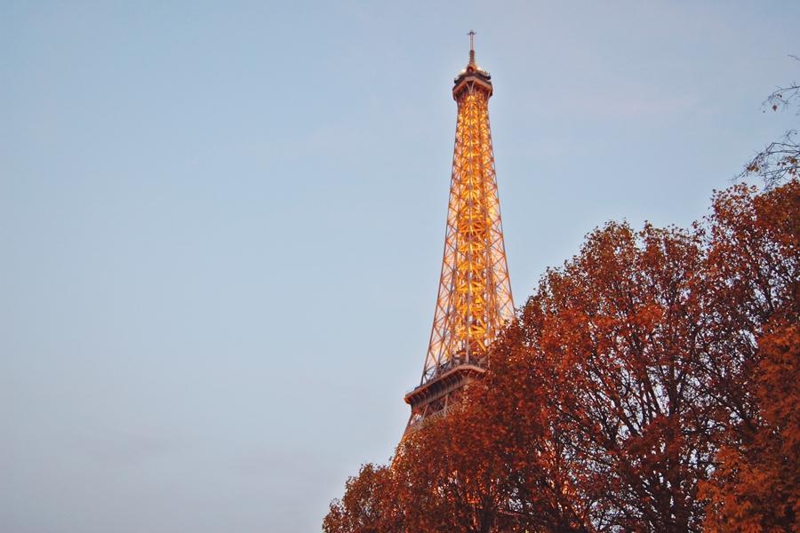 Autumn in Paris (11)