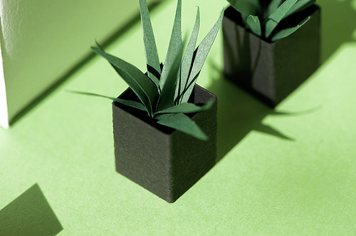 Paper Sculpture Plants
