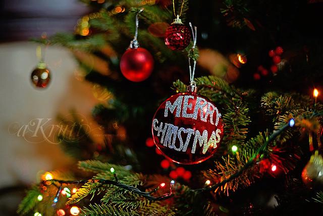 Merry Christmas (IMG_2921 v2K)