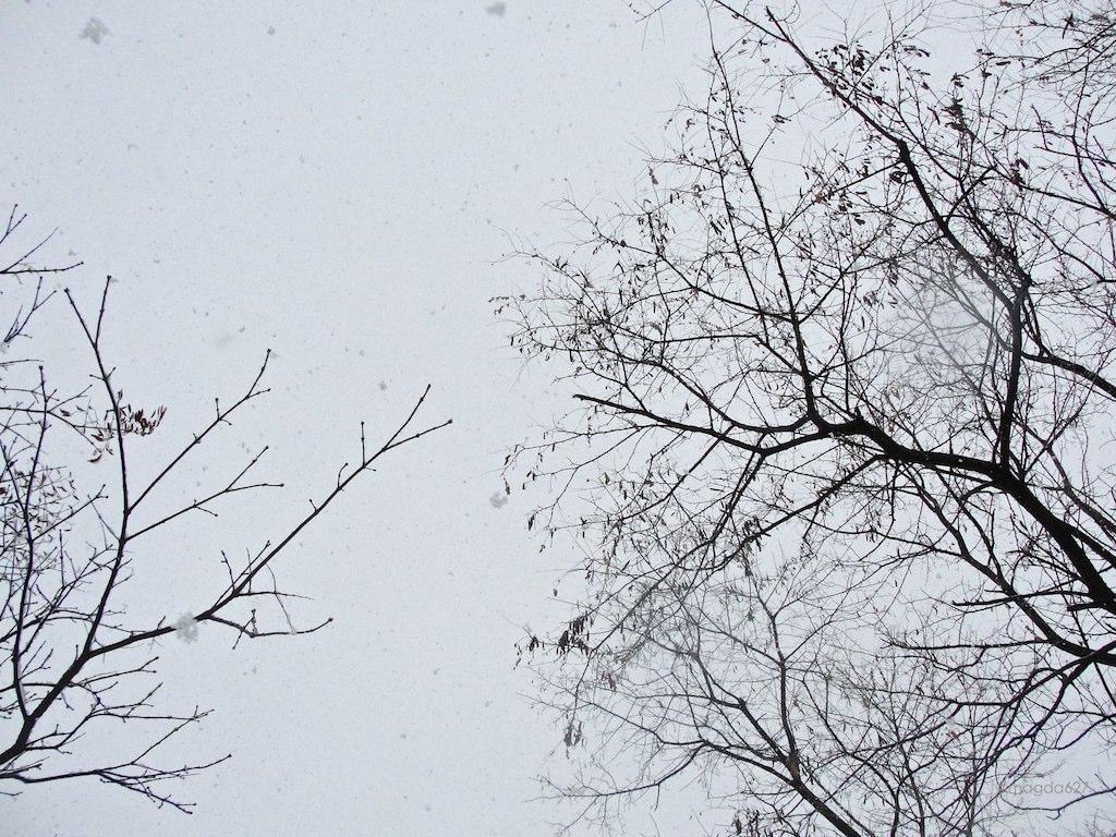 anteketborka.blogspot.com,   ciel 11 6