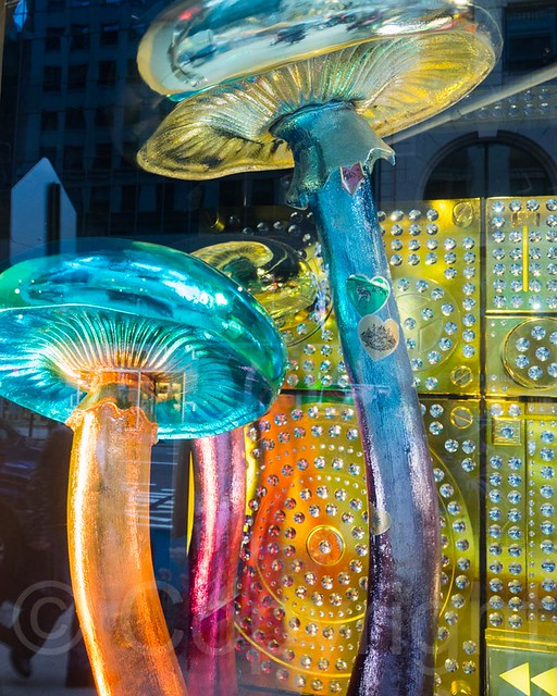 2014 Barneys Holiday Window Display, Manhattan, New York City