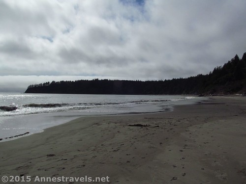 Looking north on Third Beach, Olympic National Park, Washington