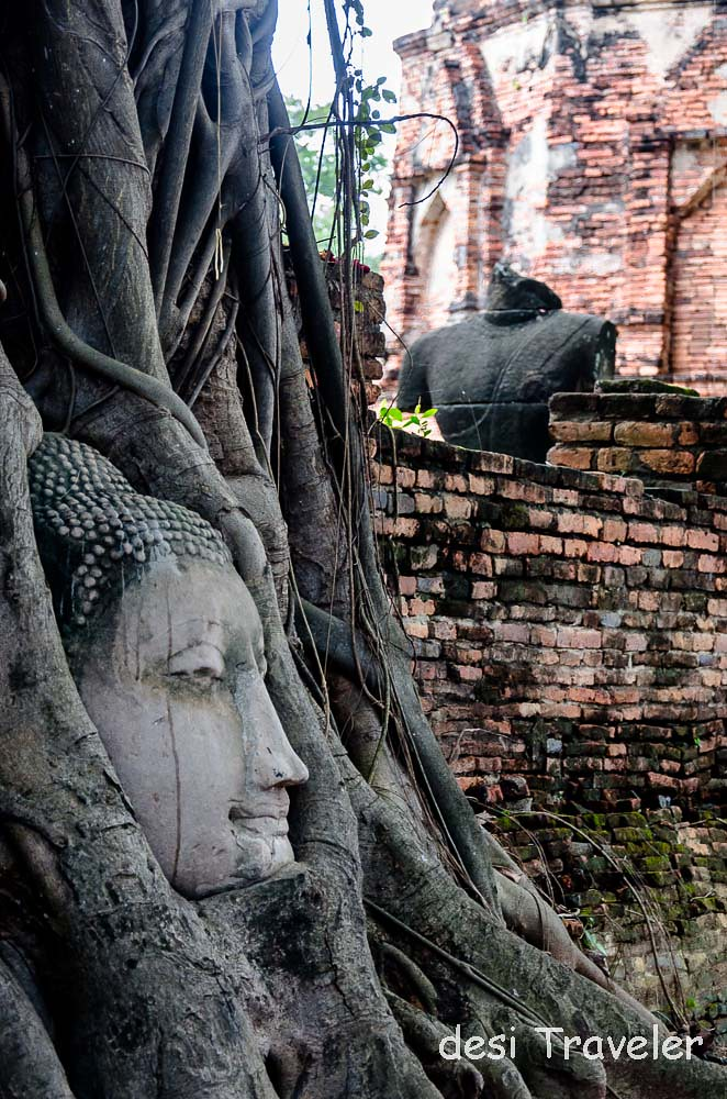 Buddha Head Tree Roots Thailand