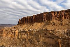 Palisade Rim Trail (1-10-15)
