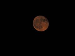 Falls Moon