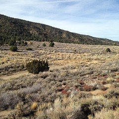 This landscape is interesting as it displays a clear boundary between two life zones: the lighter colored scrubland in the valley is characteristic of upper elevations in the nearby Mojave Desert. In fact, an argument could be made that this photo shows t