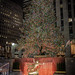 Rockefeller Center Christmas Tree-3639.jpg by vzrjvy