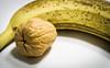 Nuss mit Riss in der Banane by gerhardwolf1507